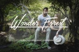 Wonder Forest